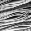 NDNV: Režimski mediji su slika i prilika same vlasti