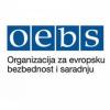 Stanković (OEBS): Stalna borba za uređivačku nezavisnost RTV-a i RTS-a